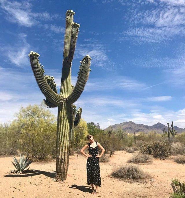 Cactus-May-07