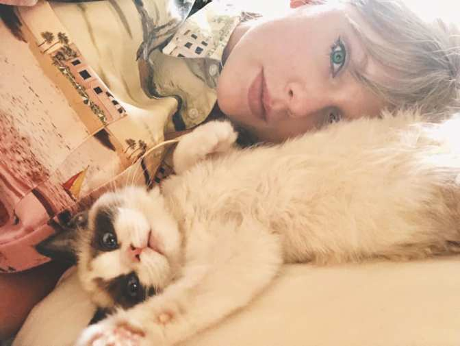 ts7-the-third-cat